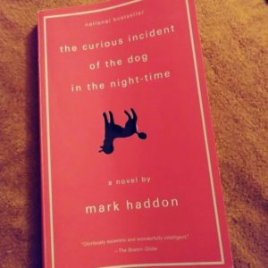 literature-month-the-curious-incident-of-the-dog-in-the-nighttime