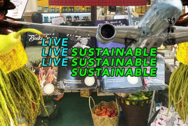 Non-Conventional Ways To Live Sustainable